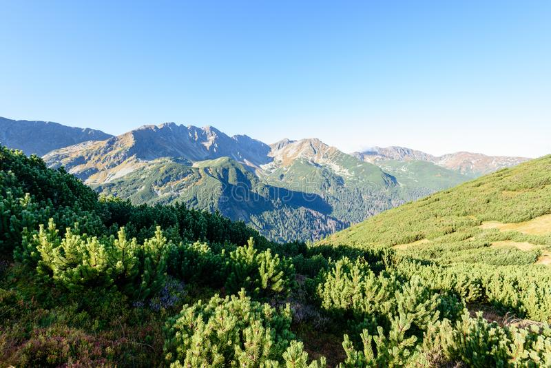 Download Slowakische Karpatenberge Im Herbst Sonnige Bergkuppen In Der Summe Stockfoto - Bild von felsen, clear: 106800268