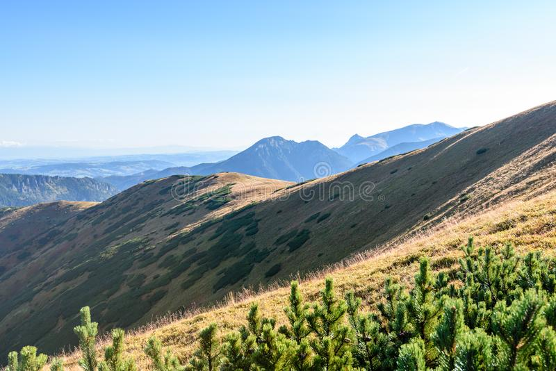 Download Slowakische Karpatenberge Im Herbst Sonnige Bergkuppen In Der Summe Stockbild - Bild von berg, ablage: 106800565