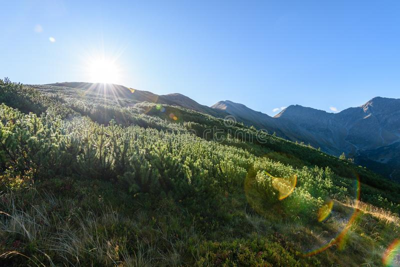 Download Slowakische Karpatenberge Im Herbst Sonnige Bergkuppen In Der Summe Stockbild - Bild von himmel, panorama: 106800719