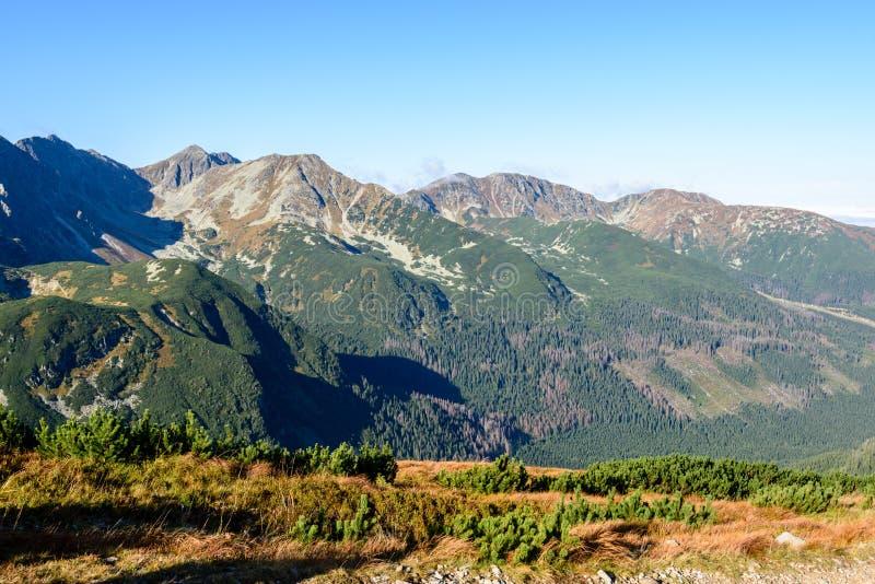 Download Slowakische Karpatenberge Im Herbst Sonnige Bergkuppen In Der Summe Stockbild - Bild von grün, stein: 106800767