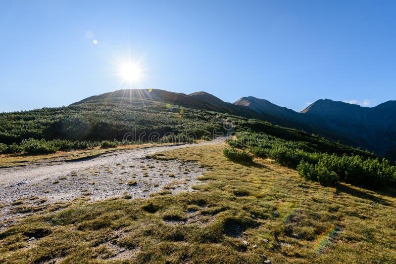 Download Slowakische Karpatenberge Im Herbst Wanderweg Auf Stockfoto - Bild von slowakei, feiertage: 106800270