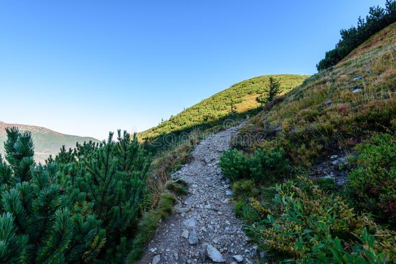 Download Slowakische Karpatenberge Im Herbst Wanderweg Auf Stockfoto - Bild von steigen, ruhe: 106800280
