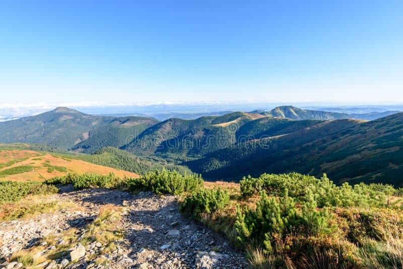 Download Slowakische Karpatenberge Im Herbst Wanderweg Auf Stockbild - Bild von felsig, clear: 106800359