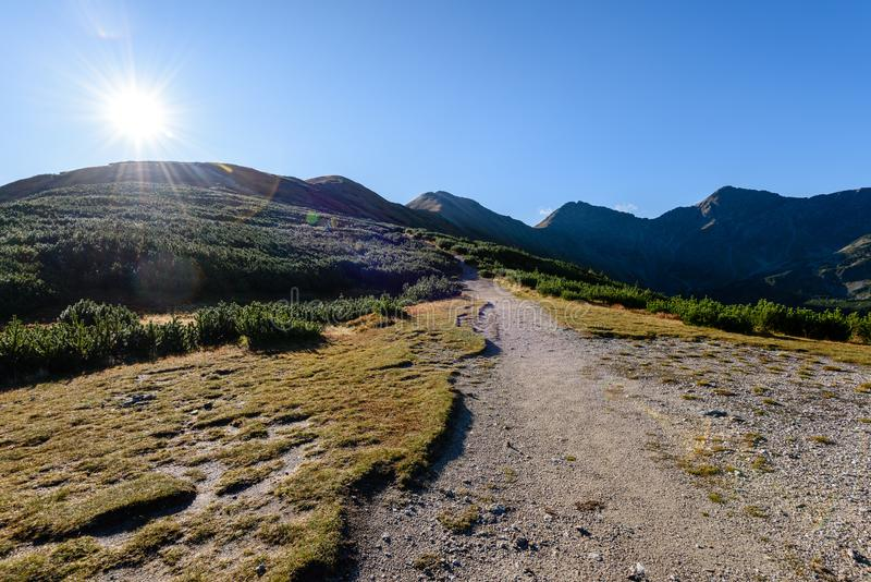 Download Slowakische Karpatenberge Im Herbst Wanderweg Auf Stockfoto - Bild von pfad, ablage: 106800740