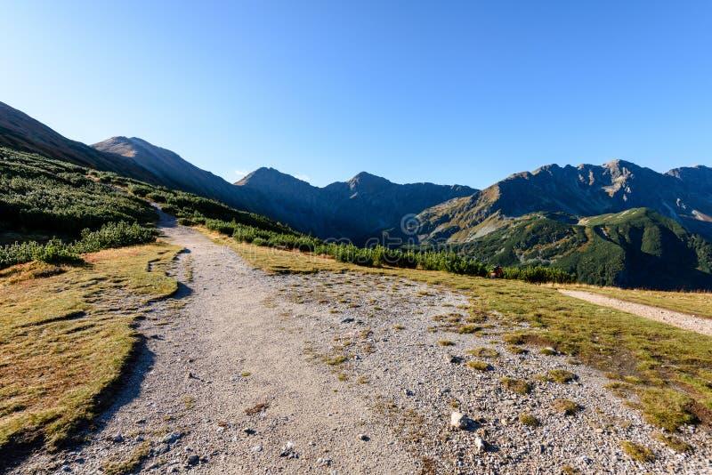 Download Slowakische Karpatenberge Im Herbst Wanderweg Auf Stockfoto - Bild von bunt, slowakei: 106800770