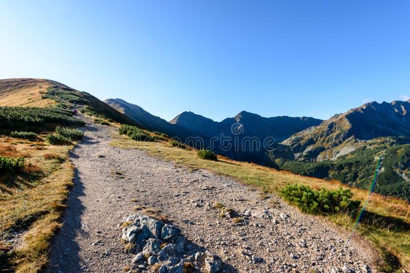 Download Slowakische Karpatenberge Im Herbst Wanderweg Auf Stockfoto - Bild von spitze, ablage: 106800792