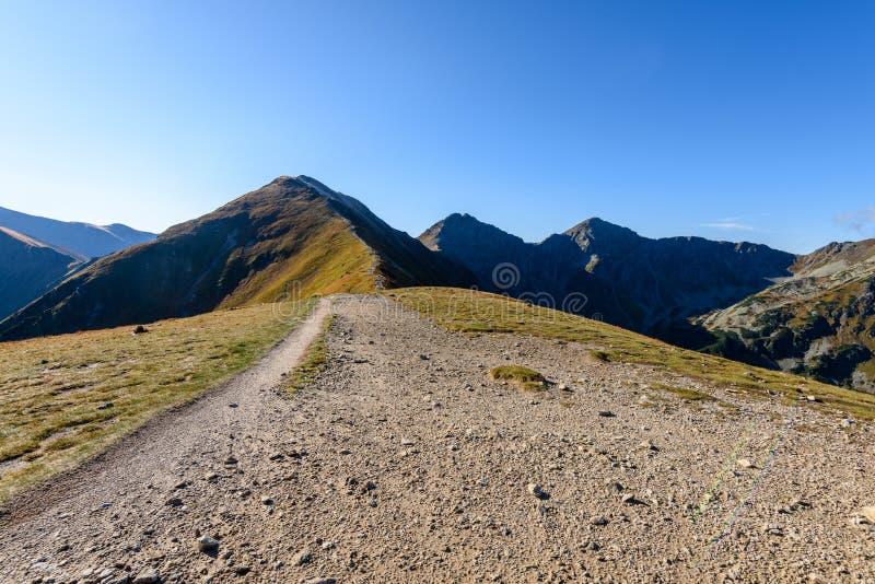 Download Slowakische Karpatenberge Im Herbst Wanderweg Auf Stockbild - Bild von ablage, frech: 106800877