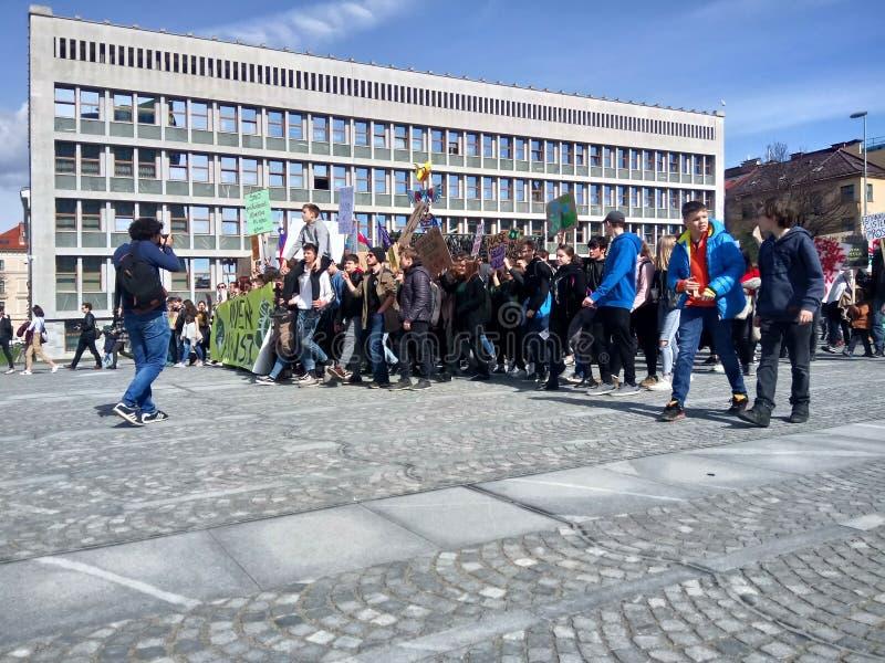 Slowenien, Ljubljana 15 03 2019 - Junge Protestors mit Fahnen an einem Jugendstreik für Klimamarsch lizenzfreie stockbilder