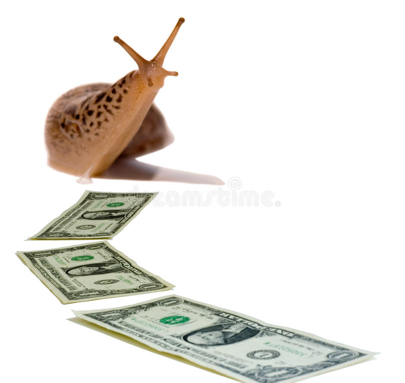 Sluggish Economy. Slug following a trail of dollar bills, symbolizing a slow economy royalty free stock photo
