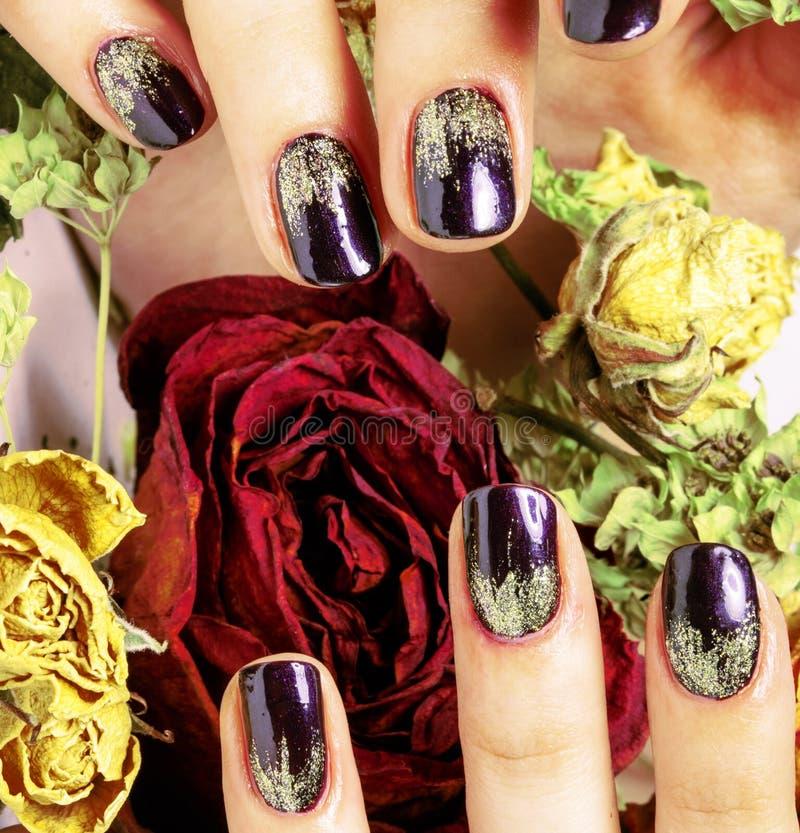 Sluit beeld van manicurespijkers met droge rode bloem steeg, deh stock afbeeldingen