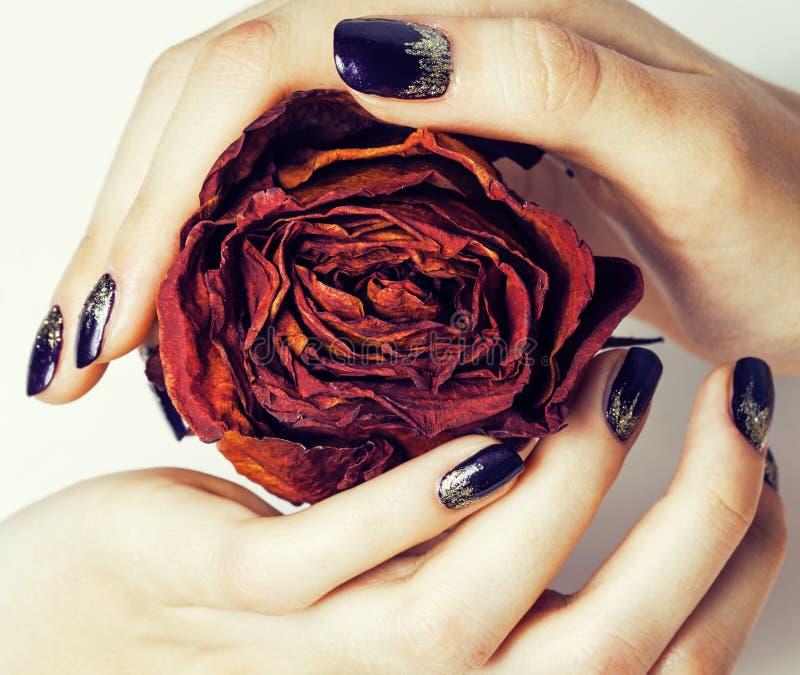 Sluit beeld van manicurespijkers met droge rode bloem steeg, ontwaterd door de winter stock afbeelding