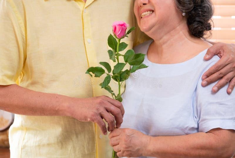 Sluit het mannelijke hogere hand roze geven steeg tot vrouw in de Dag van Valentine De gelukkige glimlachende vrouwelijke oudste  stock foto's