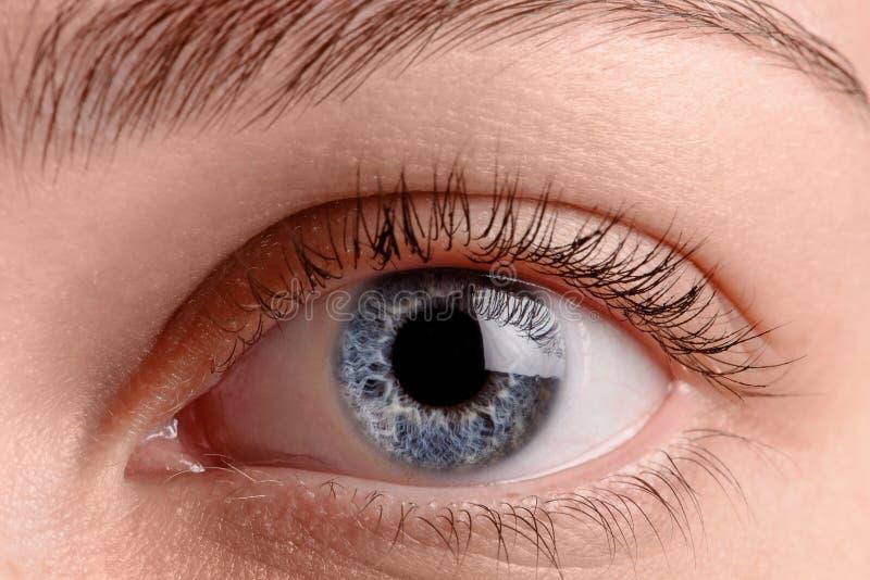Sluit omhoog blauw oog stock foto's