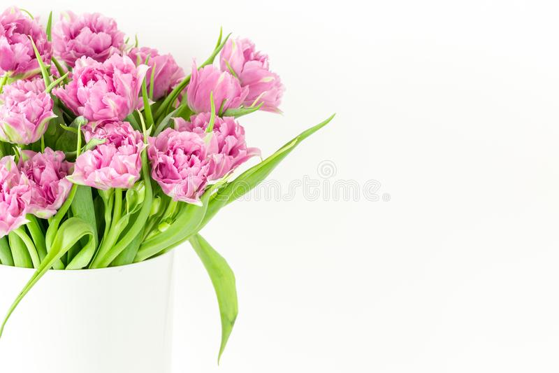 Sluit omhoog boeket van roze tulpen in emmer De verse bloem van de lentepasen Witte achtergrond, exemplaarruimte royalty-vrije stock foto