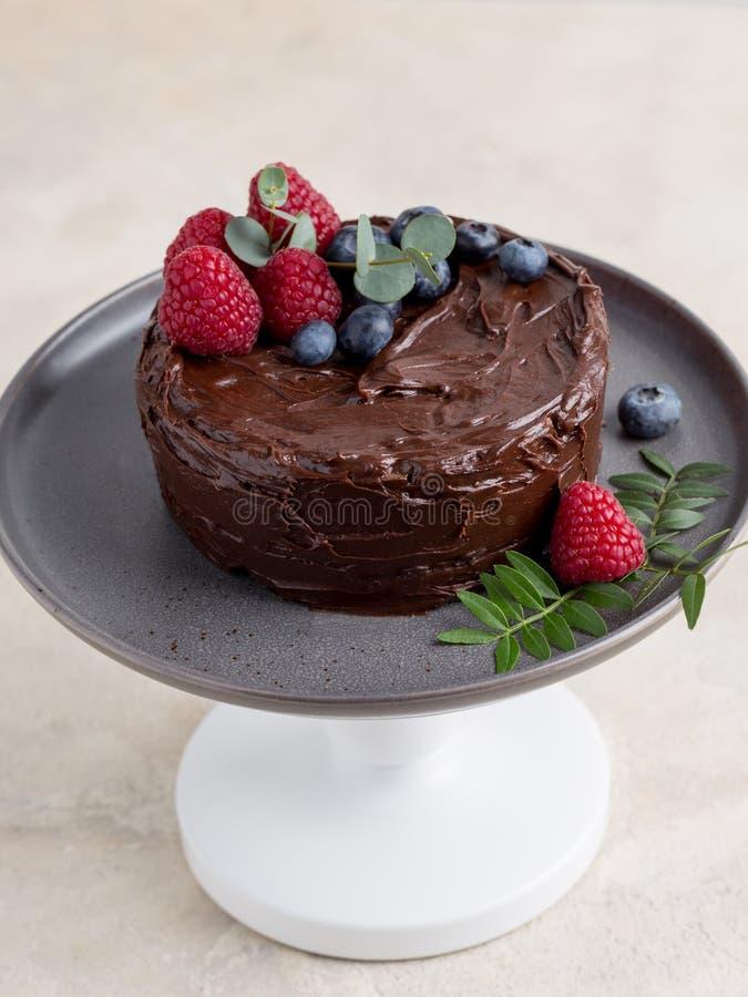 Sluit omhoog chocoladecake met bessendecor op grijze plaat op heldere achtergrond stock foto