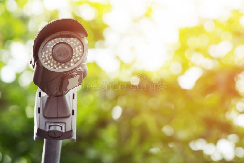 Sluit omhoog de camera van multi-Hoekkabeltelevisie zijn geïnstalleerd in het groene parkpubliek stock afbeeldingen