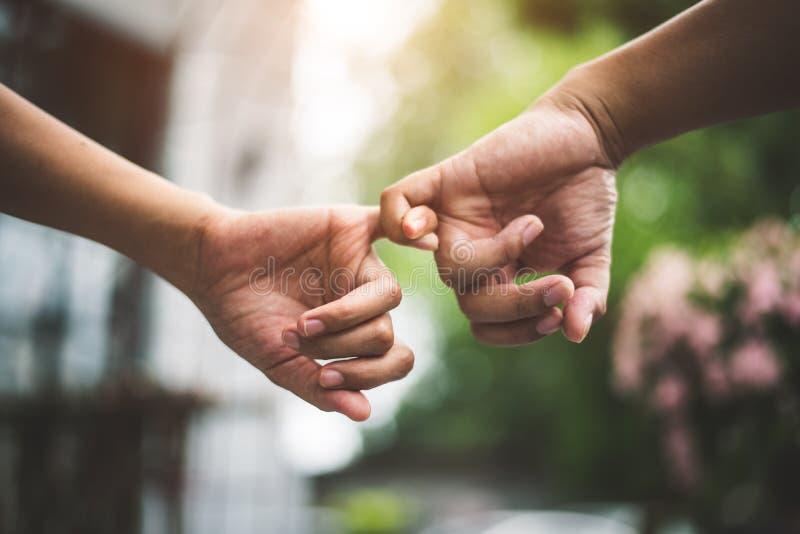 Sluit omhoog de pinkenvingers van de paarholding in park in de herfst zoals zweren en gebaar in huwelijksceremonie beloof Handen  royalty-vrije stock afbeeldingen