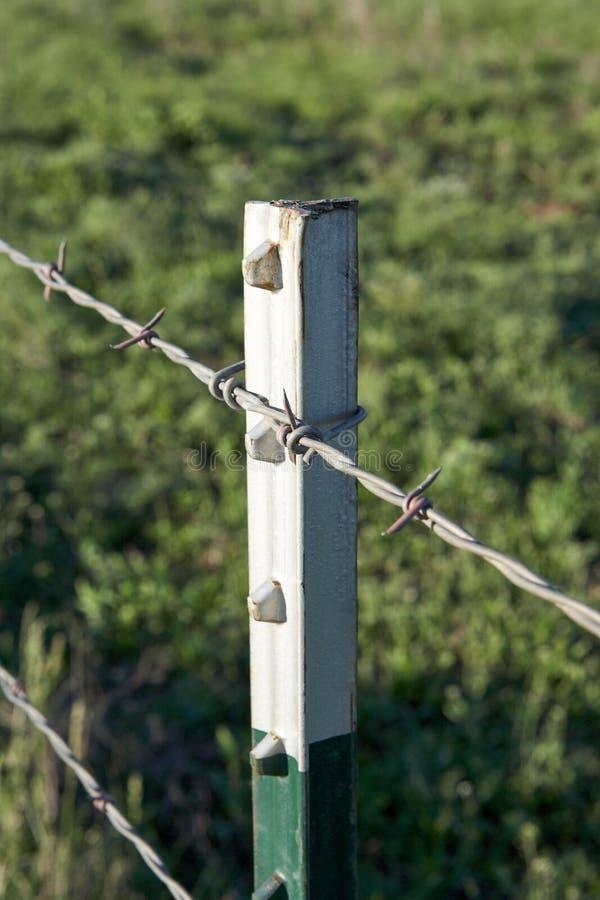 Sluit omhoog detail van een omheining van het prikkeldraadlandbouwbedrijf stock foto's