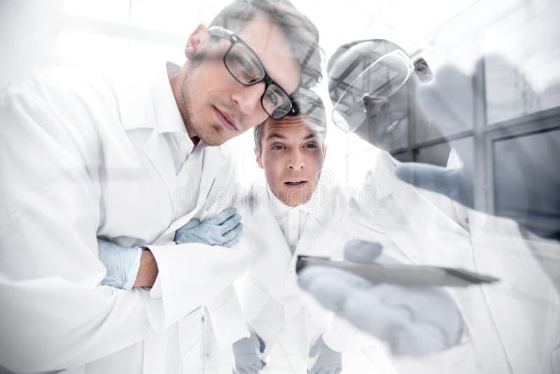 Sluit omhoog een groep wetenschappers die de resultaten van bespreken experimen stock afbeelding