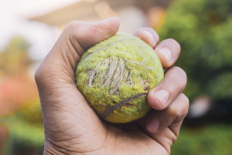 Sluit omhoog het tennisbal van de Mensenholding op vage achtergrond metaforen van winst aan de winnaar royalty-vrije stock foto