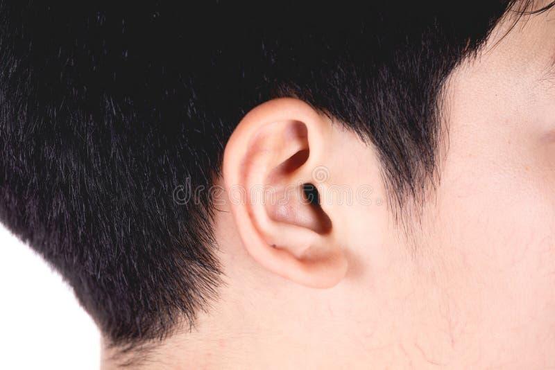 Sluit omhoog Hoofd van de Aziatische nadruk van het jongens zwarte haar op juist oor zijhoofd op witte achtergrond stock afbeeldingen