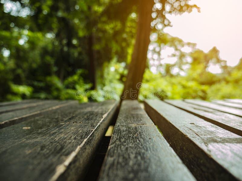 Sluit omhoog houten stoel het rust punt in de berg van Khao Luang in het Nationale Park van Ramkhamhaeng stock afbeelding