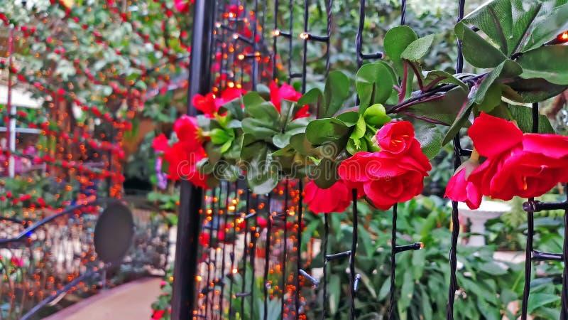 Sluit omhoog Mooie bloembogen en gang in tuin stock afbeeldingen