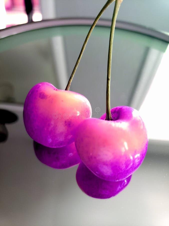 Sluit omhoog op roze dubbele kersen in bezinning stock foto's