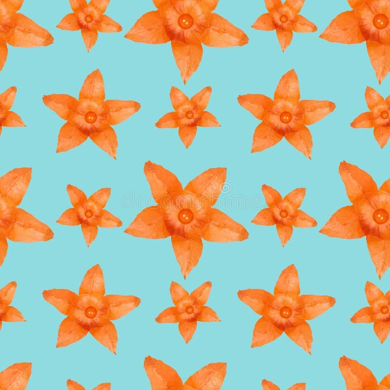 Sluit omhoog oranje naadloze het patroonachtergrond van de physalisbloem royalty-vrije illustratie
