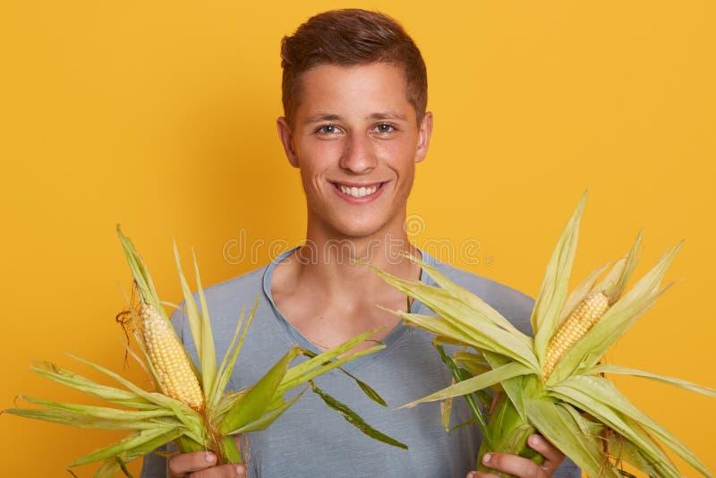 Sluit omhoog portret van de knappe blonde mens die verse suikermaïsmaïskolven met bladeren op gele achtergrond, gelukkig mannetje royalty-vrije stock afbeeldingen