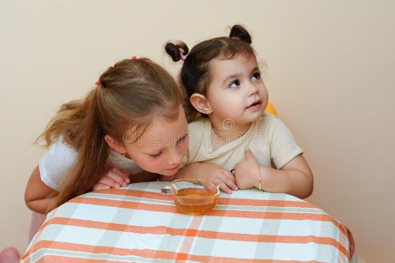 Sluit omhoog portret van twee het grappige leuke meisje honing in huis eet stock afbeelding