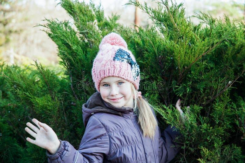 Sluit omhoog portretmeisje in koud seizoen dichtbij sparren stock foto