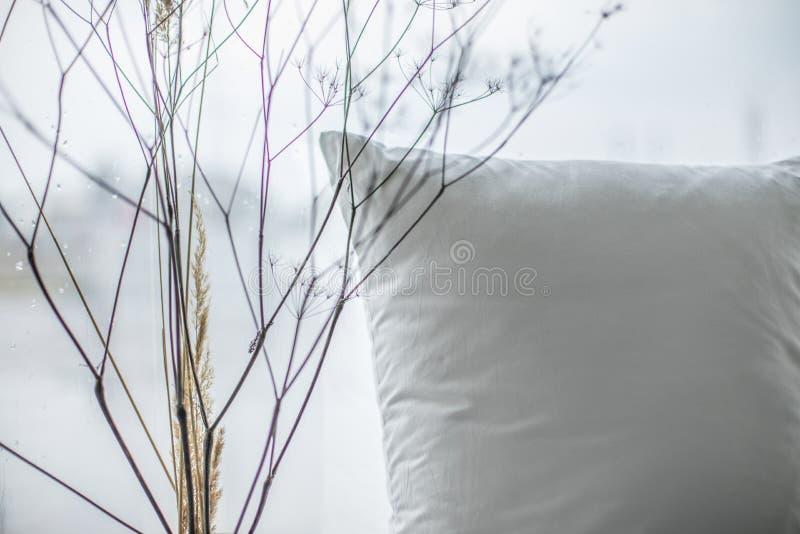 Sluit omhoog slaapkamermening met hoofdkussen en droge installaties stock foto