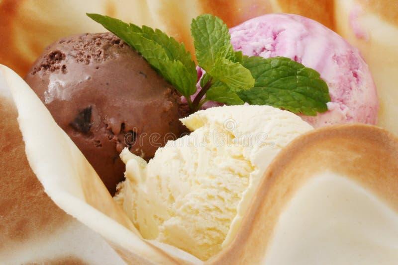 Sluit omhoog Stilleven van Lepels van Chocolade, Vanille, Berry Ice Cream royalty-vrije stock fotografie
