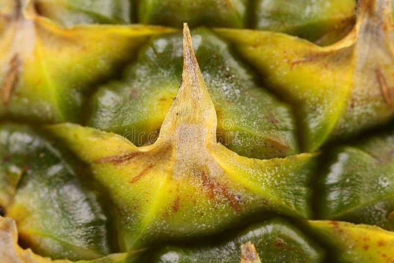 Sluit omhoog textuur van verse rijpe ananas. Macro. stock afbeeldingen