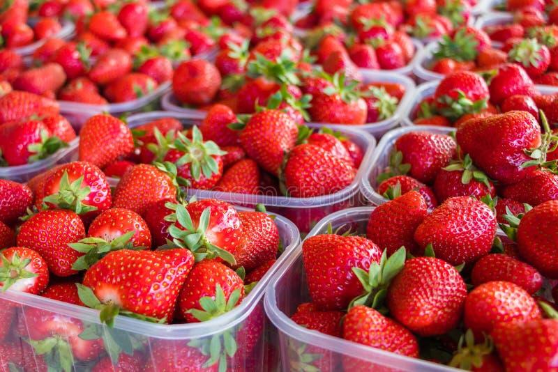 Sluit omhoog van aardbeien in plastic dozen worden getoond die royalty-vrije stock fotografie