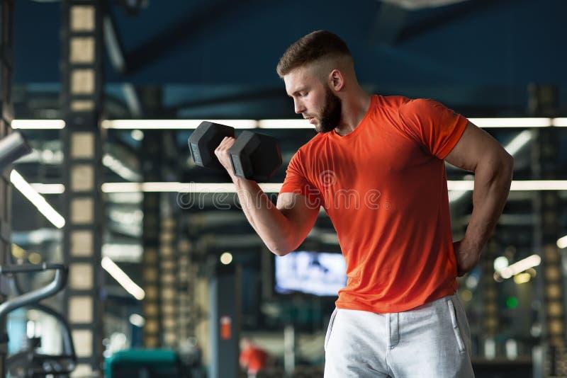 Sluit omhoog van bodybuilder die een domoor houden en in gymnastiek uitwerken royalty-vrije stock fotografie