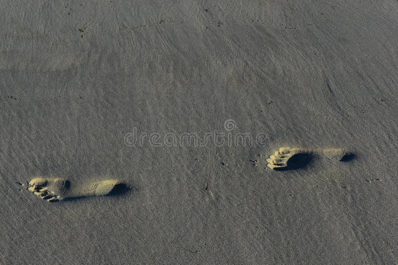 Sluit omhoog van de drukken van de zandvoet op een strand stock foto