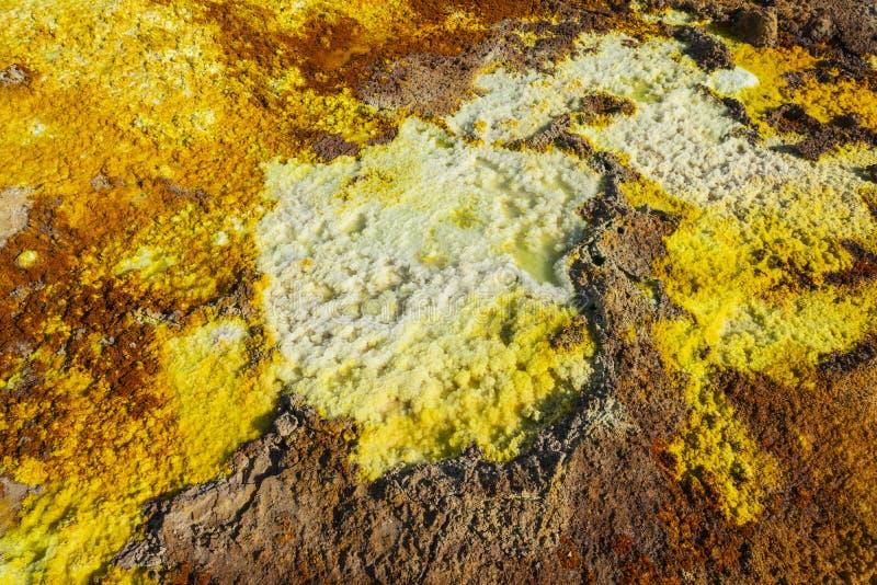 Sluit omhoog van de zure en zoute concreties in Dallol-plaats in de Danakil-Depressie in Ethiopië, Afrika stock fotografie