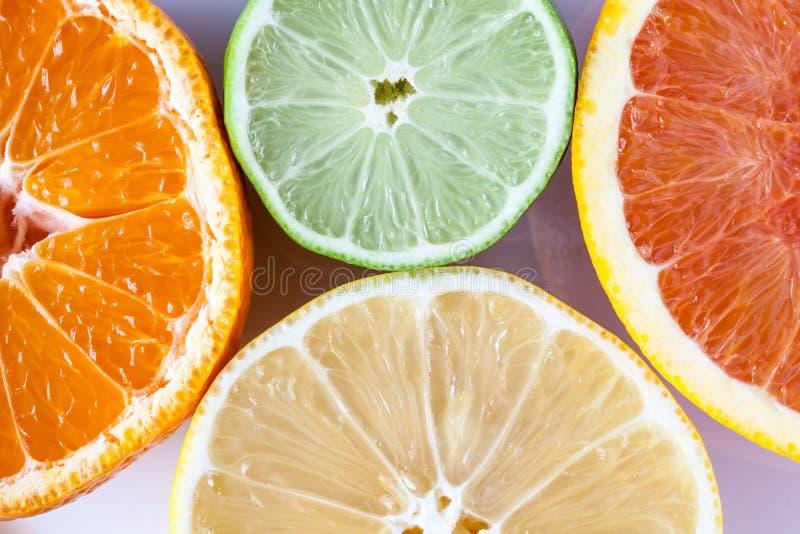 Sluit omhoog van diverse citrusvruchten - de citroen, de kalk, mandarin en de grapefruit van Myers stock afbeelding