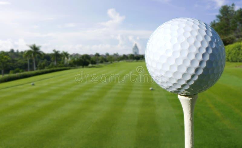 Sluit omhoog van een Golfbal op een cursus royalty-vrije stock afbeeldingen