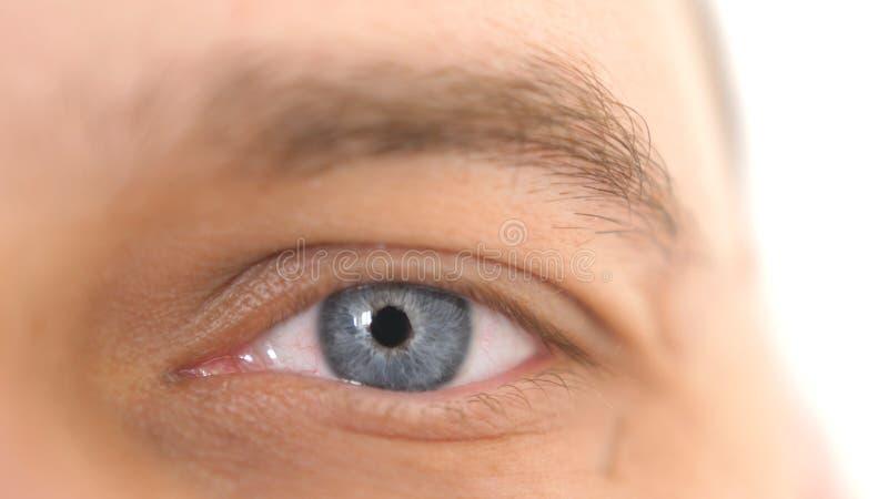 Sluit omhoog van een mannelijk oog Detail van een blauw oog van een mens die camera bekijken royalty-vrije stock afbeeldingen