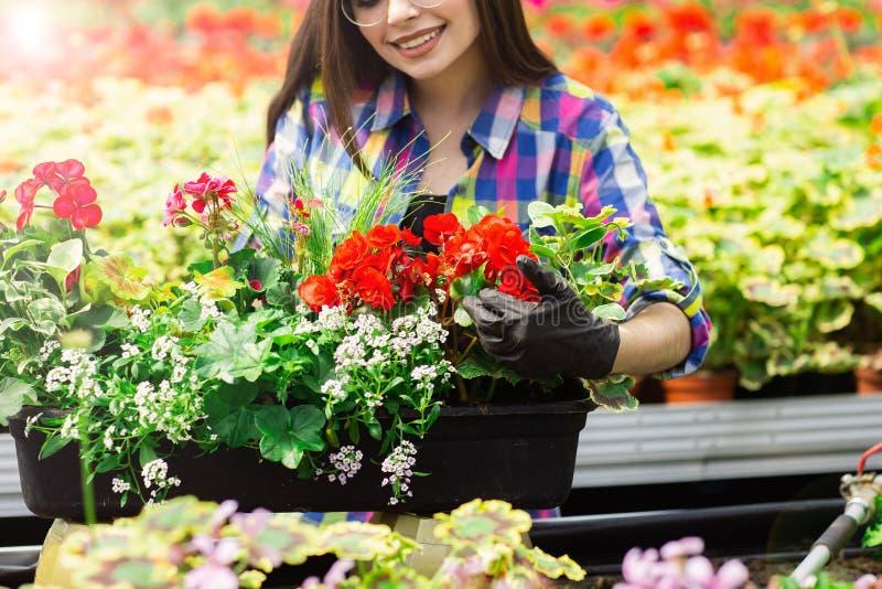 Sluit omhoog van een mooi glimlachend meisje, een arbeider met bloemen in de serre Het conceptenwerk in de serre royalty-vrije stock fotografie