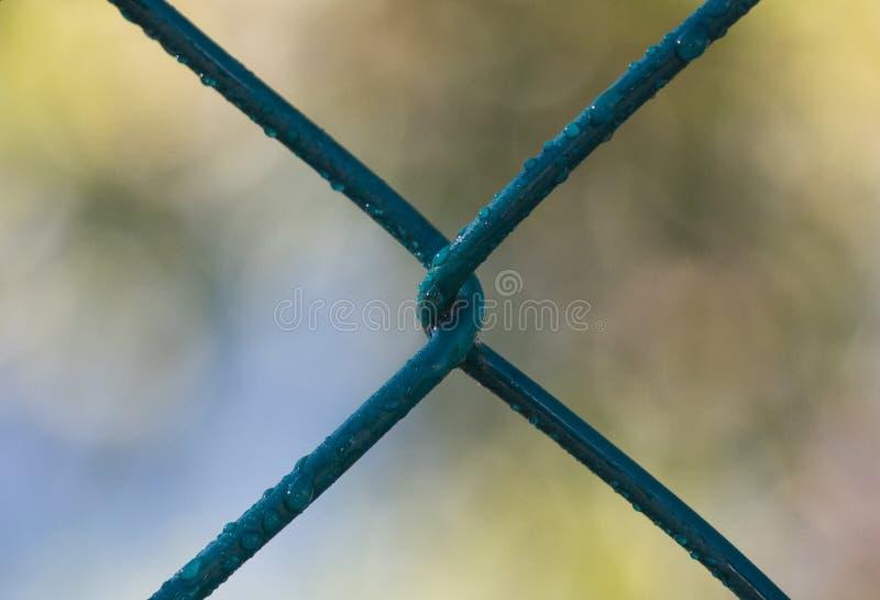 Sluit omhoog van een omheining die van het diamantnetwerk de verdraaide draad tonen royalty-vrije stock fotografie