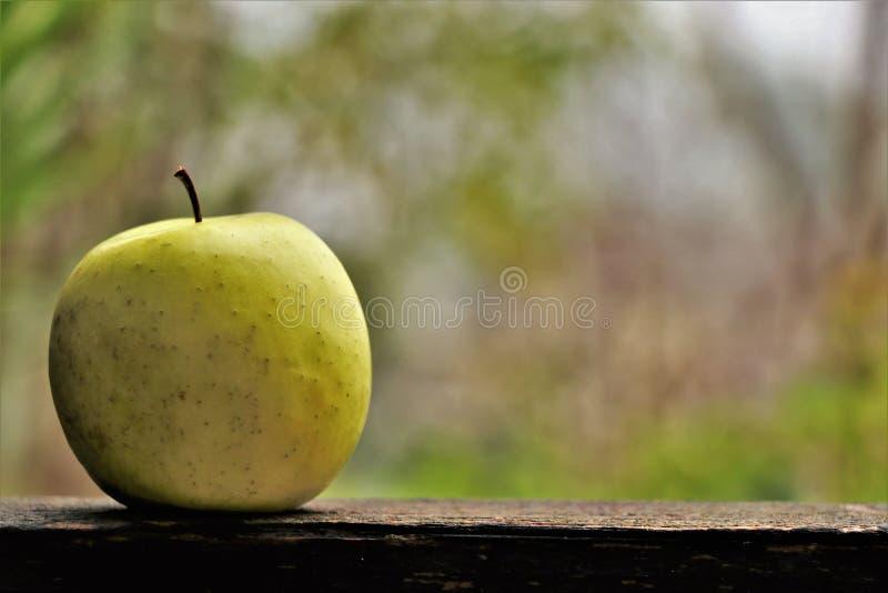 Sluit omhoog van een organische verse appel royalty-vrije stock afbeeldingen