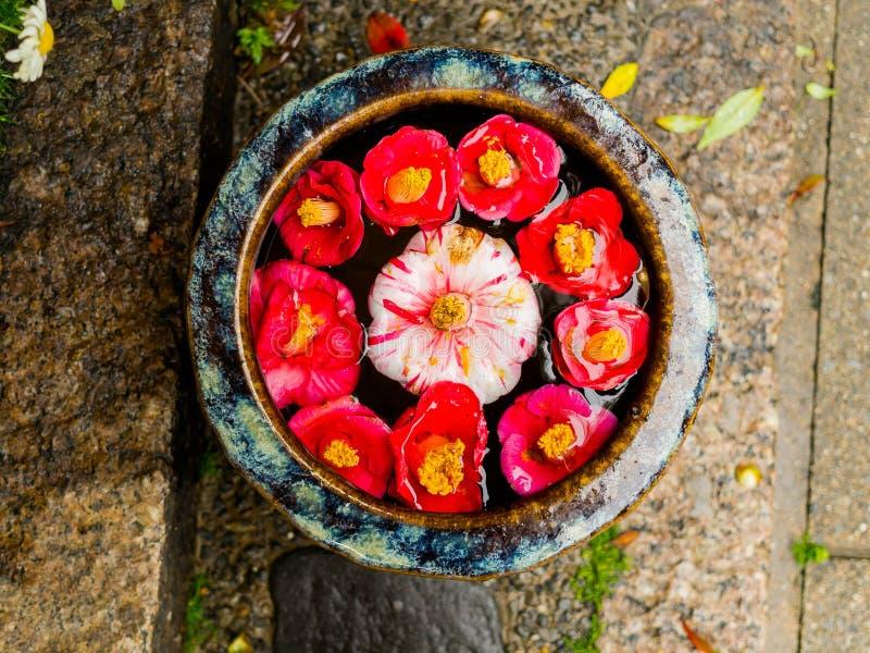 Sluit omhoog van een reeks van de de rode bloemen en steen van de cattleyaorchidee als oblatie over een gestenigde grond in Japan royalty-vrije stock foto's
