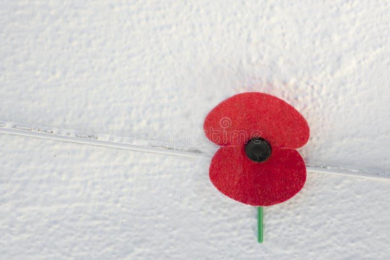 Sluit omhoog van een rode herinneringspapaver op witte muurachtergrond, symbool in het Verenigd Koninkrijk, Canada, Australië en  stock fotografie