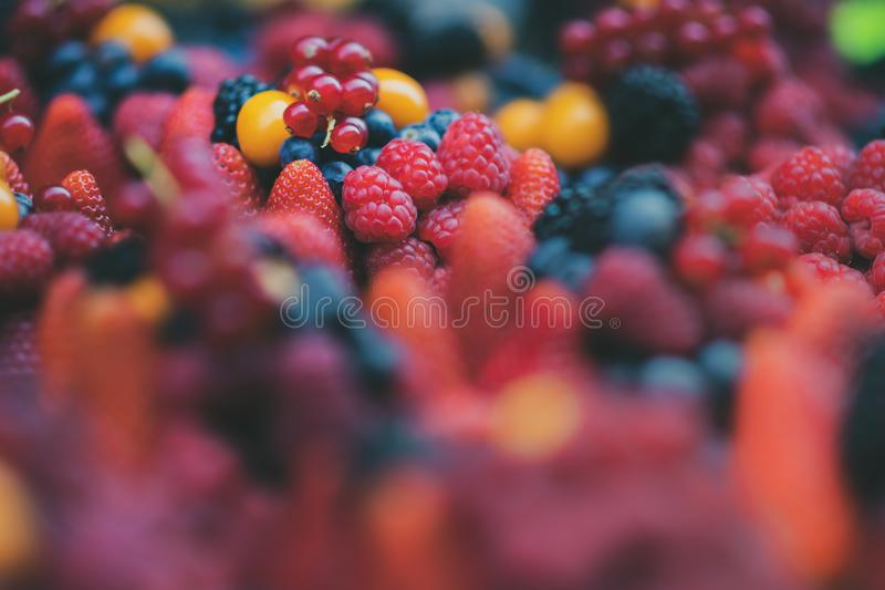Sluit omhoog van een selectie van heldere vers fruitbessen - omvat Aardbei, Bosbes, Framboos, Rood Blackberry, stock afbeelding