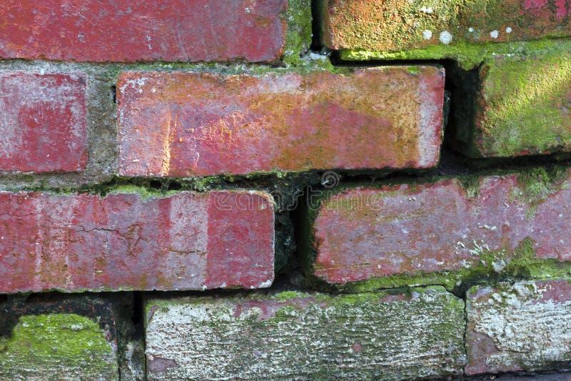Sluit omhoog van Gebogen Wijnoogst die Rode Bakstenen muur afbrokkelen royalty-vrije stock foto