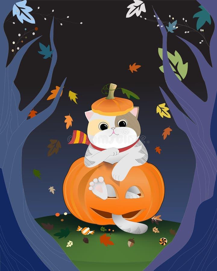 Sluit omhoog van grijze bontkat in sjaalzitting binnen gelukkige oranje pompoen stock illustratie